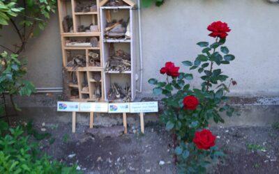 Installation d'un hôtel à insectes par les enfants du catéchisme